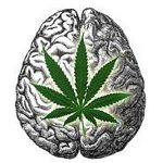 CBD oil can get your serotonin levels regulated.