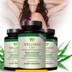 Wellness CBD Logo